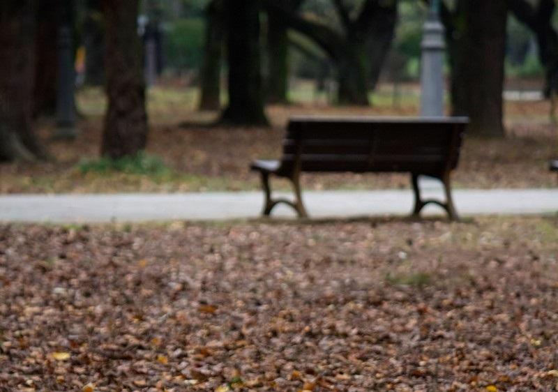 秋の訪れと恋愛
